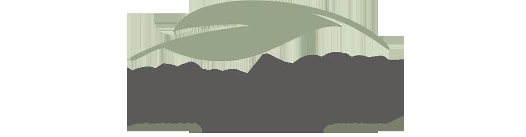 Palm Beach Behavioral Health & Wellness